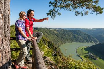 Donausteig_P-W_Steiner_Felsen_c_WGD_Tourismus_GmbH_Hochhauser.jpeg