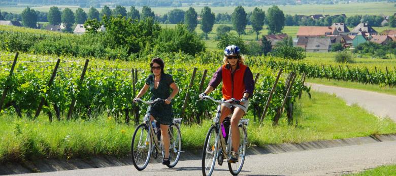 Sternradtour Im Elsass Und Am Rhein Ab Breisach 7 übernachtungen