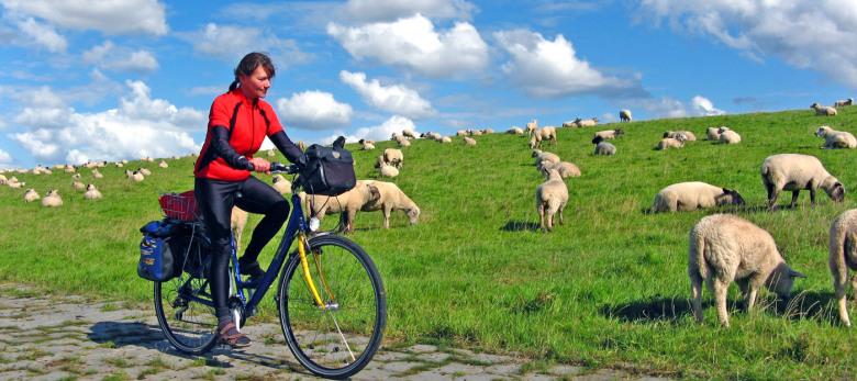 Fahrradwege Ostfriesland Karte.Ostfriesland Radrundtour Ab Oldenburg über Emden Und Norderney 7